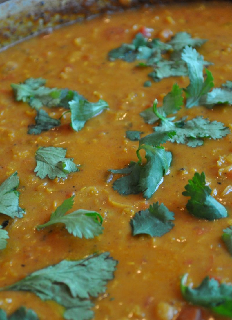 Quick Red Lentil Curry